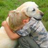 hug-kid dog